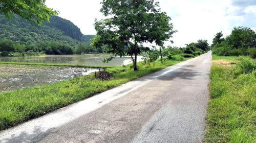 ขายที่ดินที่นาเขาย้อย.เพชรบุรี 14 ไร่ 2 งาน หลังติดเขา ติดถนน 2 ด้าน ด้านหน้าติดถนนลาดยาง และ ด้านหลังหลังติดถนนลูกรัง  ขายไร่ละ 300,000