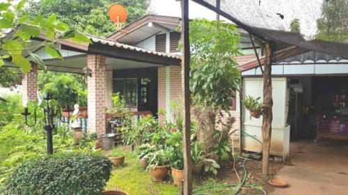 ขายบ้านสวนกุสุมาลย์ สกลนคร เนื้อที่ 165 ตรว บ้านเดี่ยวชั้นเดี่ยว ในเขตเทศบาล กุสุมาลย์ ขายถูก กู้ได้เต็ม