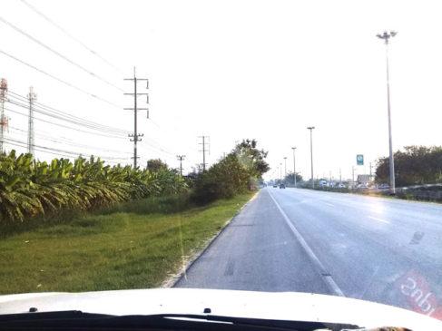 ขายที่ดินติดถนน347 เส้นปทุม-บางปะหัน