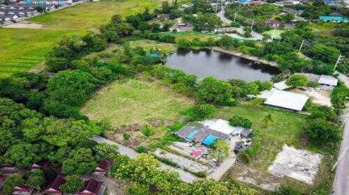 ขายที่ดินจัดสรรแบ่งขายบ้านบึง ทำเลทอง ตรว 20,000 เศษ เริมต้น 195 ตรว  ขายที่ดินในฝันฮวงจุ้ยดี