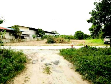 ขายที่ดินหนองรี-ชลบุรี ที่ดินหนองรีเหมาะสร้างหอพัก เหมาะสร้างห้องเช่า